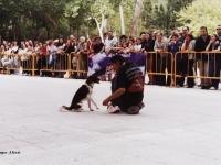 10 Concurso de Obediencia