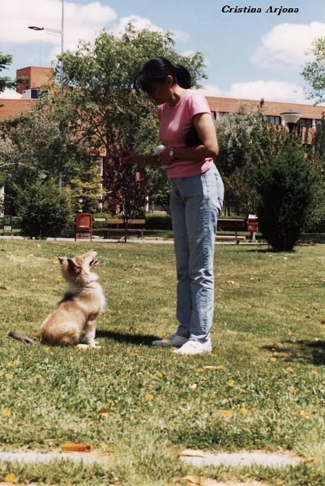 Thelma, de Pilar Izquierdo, con tres meses