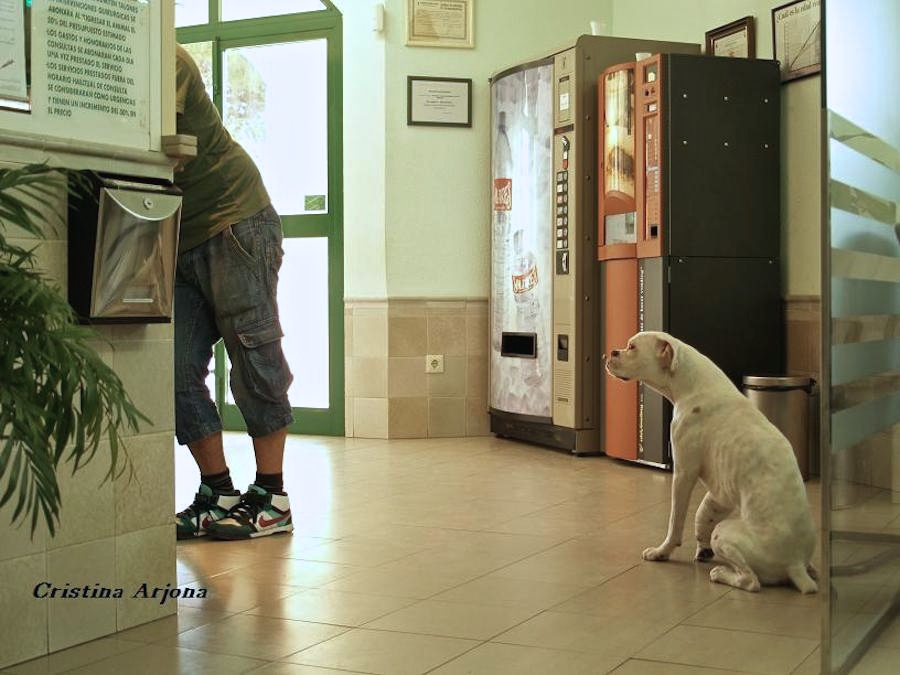 Autocontrol en clinica. Foto en Policlínico Raspeig
