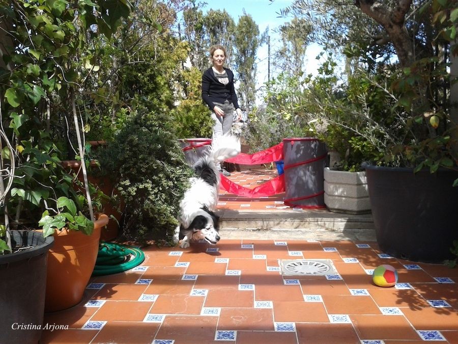 80 Mari Carmen activa refejos a Siro