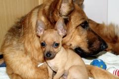 03-Con-Karin-su-mama-adoptiva.JPG